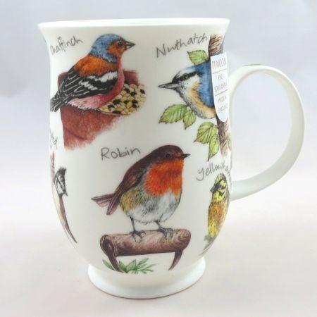 Birdlife Robin Suffolk