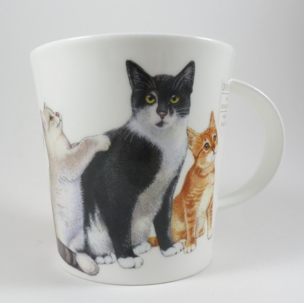 Cats and Kittens, Schwarz-Weiss