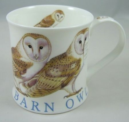 Wessex Wild Birds, Owl