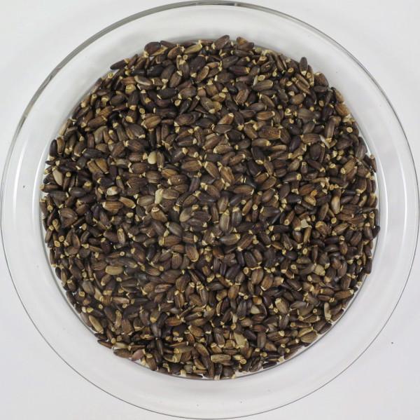 Mariendistel - Früchte, BIO, 100g