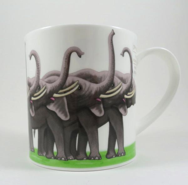 Show offs Elefant, Orkney