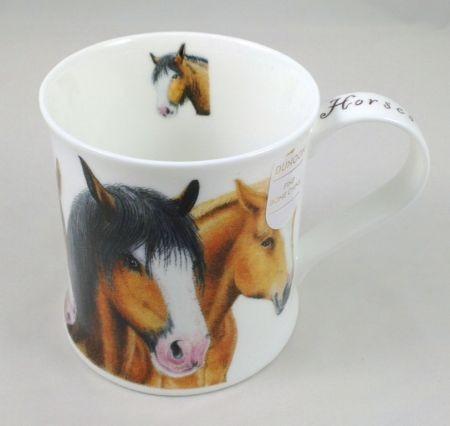 Wessex Friendly Faces - Horses